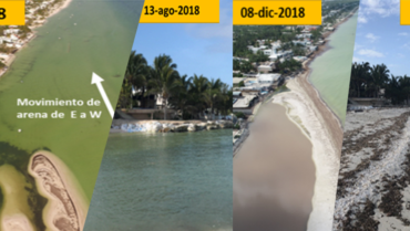Playa de San Miguel, Yucatán: What to do to ensure its long-term sustainability?
